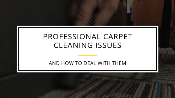 Professional carpet cleaning issues and how to deal with them